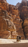Coachman in horse cart near The Treasury. Petra. Jordan. Royalty Free Stock Photos