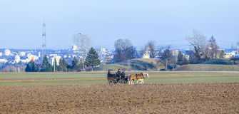 Coachman with horse coach and the skyline of Frankfurt Royalty Free Stock Photos