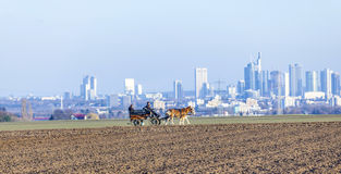 Coachman with horse coach and the skyline of Frankfurt Stock Photography