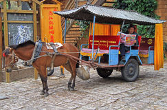 Coachman of horse-drawn vehicle is waiting Royalty Free Stock Image