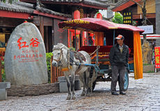 Coachman of horse-drawn vehicle is waiting Royalty Free Stock Photos