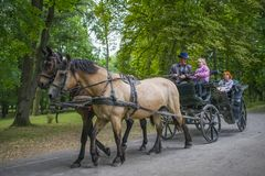 A coachman on horseback drives children in the park of a castle in N vezha on the eve of the 4th of July, filmed on June royalty free stock photography