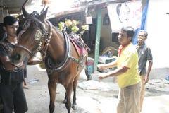 Coachman and horses subscriptions officials Stock Photos