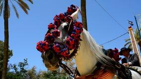 Coachmen horse carriage at the fair, Jerez de la Frontera stock footage