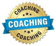 coachning royaltyfri illustrationer