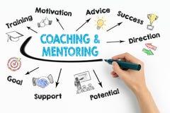 Coachning- och mentoringbegrepp Kartlägga med nyckelord och symboler på vit bakgrund royaltyfria bilder
