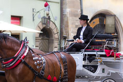 Coachwoman carriages cab rides- Cracow, Poland Royalty Free Stock Photography
