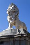 Coade Stone Lion on Westminster Bridge Stock Photos
