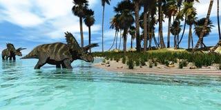 Coahuilaceratops Stock Photography