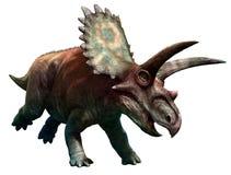 Coahuilaceratops royaltyfri illustrationer