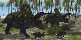 Coahuilaceratops Dinosaur Stock Photography
