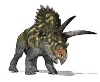 Coahuilaceratops Stock Photo