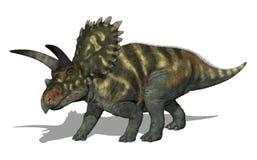 coahuilaceratopsdinosaur stock illustrationer