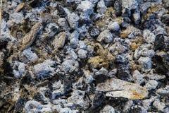 Coal and ash royalty free stock photo