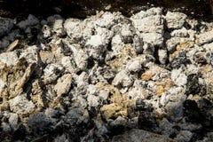 Coal ashes royalty free stock photo
