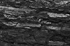 Coal. Background black stone structure Stock Photos