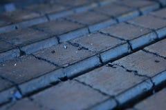 Coal briquet. Stack of dark coal briquettes Stock Photos