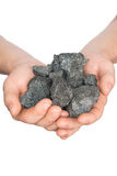 Coal coke in hand on white background Stock Photo