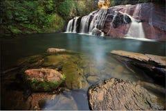 Coal Creek秋天,新西兰 免版税库存照片