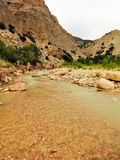 Coal Creek в каньоне кедра в Юте Стоковое Изображение RF
