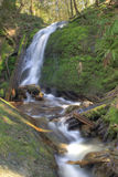 Coal Creek Falls Royalty Free Stock Photos