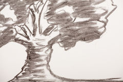 Coal drawing. Which shows a tree Royalty Free Stock Images