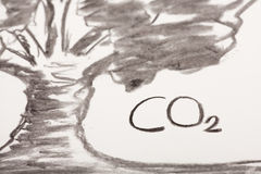 Coal drawing. Which shows a tree Royalty Free Stock Image