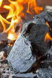 Coal and Fire. Burning Fire Bright Flames. Hot Charcoal Briquettes. Stock Images