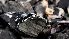 The coal in the fire smolders and burns. Close stock footage