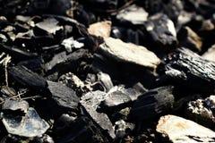 Coal fragments focus. Focus on black coal fragments stock image