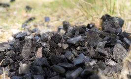 Coal on grass Stock Images