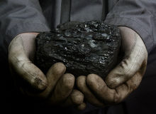 Coal in hands. Coal in the hands of a miner Royalty Free Stock Photo