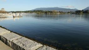 Coal Harbor Rowing Teams, Vancouver stock video footage