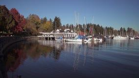 Coal Harbor, Stanley park autumn 4K UHD. Vancouver`s Stanley park and Coal Harbor marina. British Columbia, Canada. 4K. UHD stock video footage