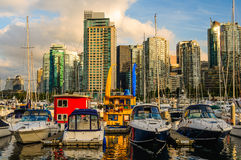 Coal Harbour Vancouver. Boats tied up at Coal Harbour. on the Vancouver waterfront near Stanley Park. West End Vancouver apartment buildings compete for the view royalty free stock image