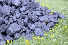 Coal,meadow royalty free stock images