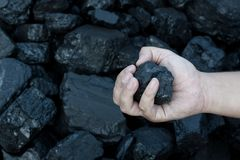 Coal mining hand holding sunlit coal stone part Stock Images
