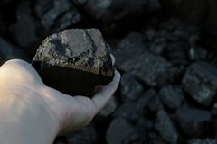 Coal mining hand holding sunlit coal stone part. Coal mining - hand holding sunlit dark coal stone part. Concept coal mining, coal processing, energy Stock Photo