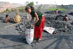 Coal Piker Stock Photo