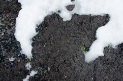 Coal shale layer in soil profile. Snow. Black charcoal texture background.  Details on the surface of charcoal. Burning charcoal g Royalty Free Stock Photo