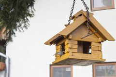 Coal Tit on a garden bird feeder, blurred background Royalty Free Stock Photography