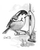 Coal Tit illustration. Pen and ink illustration of Coal Tit Royalty Free Stock Photos