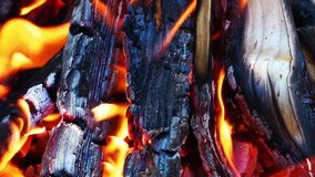 Coal and Wood Fire stock video footage