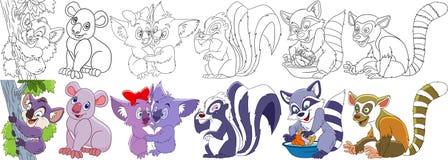 Coalas dos desenhos animados ajustadas Imagem de Stock