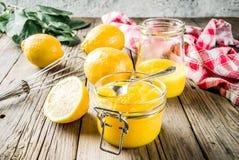 Coalhada de limão caseiro foto de stock royalty free