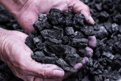 Coalmining - manhand som rymmer naturligt svart kol för backgr Arkivfoton