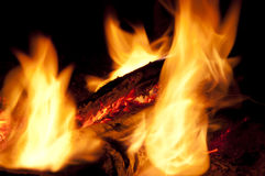 Coals. Burning wood, the fire element Royalty Free Stock Photos