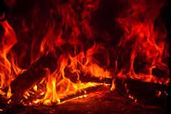 Coals and ashes. Burning fire Stock Images