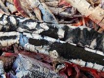 Coals of a burning campfire. Close up royalty free stock image
