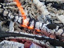 Coals of a burning campfire. Close up stock photos